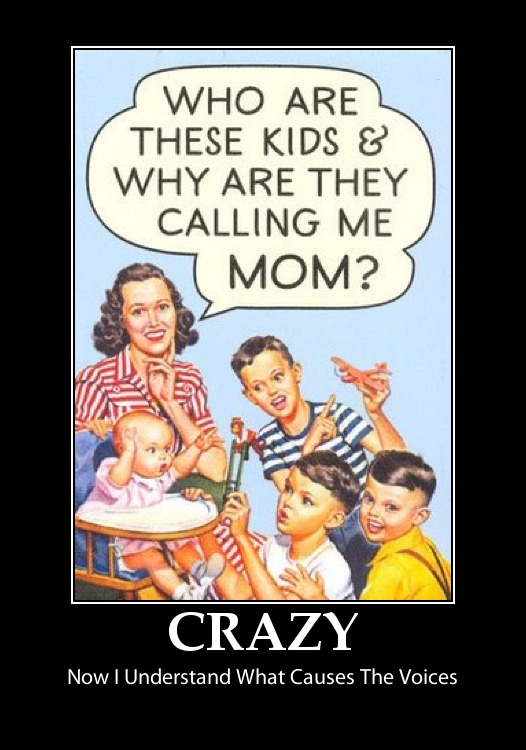Funny Sign Moms Voices Crazy