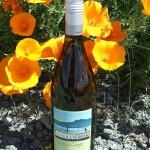 Vancouver Wines